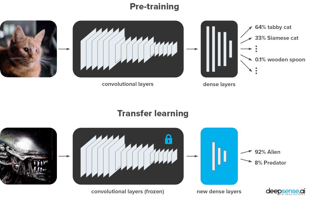 Keras vs  PyTorch in Transfer Learning - Jerry_Jin - 博客园
