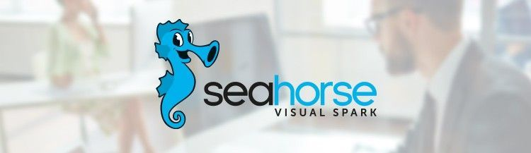 RNotebook andCustomROperations inthenewSeahorse release